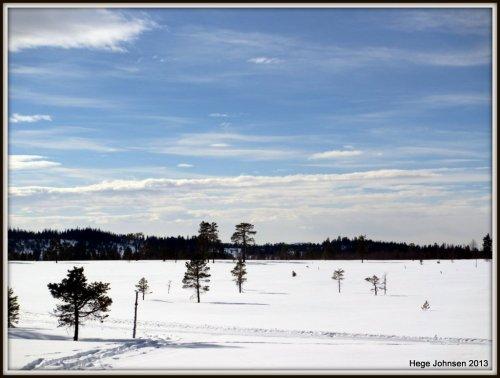 Nydelig landskap over Grønkjølen i Nordmarka.