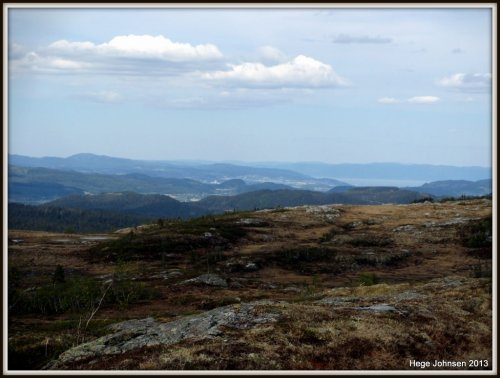 Mot Trondheim (Rosten-området).