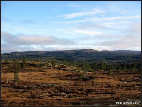 Utsikt mot Brungfjellet.