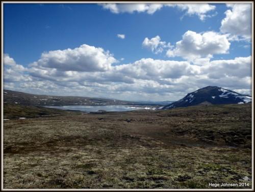 Forollsjøen og Forollhogna åpenbarer seg når man passerer på baksiden av Storsalen.
